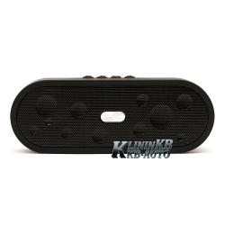 Waterproof BT speaker 10W (FM, BT,AUX, microSD)